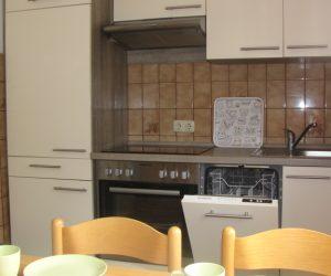 Küche mit Geschirrspüler in der Ferienwohnung Muschel